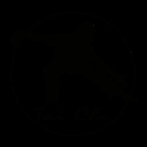 tai-chi-logo