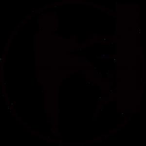 WU-SAO Kampfkunst-Schule - Kampfsport in Bremen